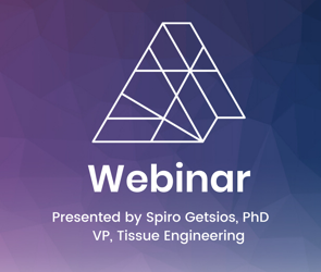 [Webinar]: Microfluidic 3D bioprinting and functional characterization of a contractile smooth muscle tissue model
